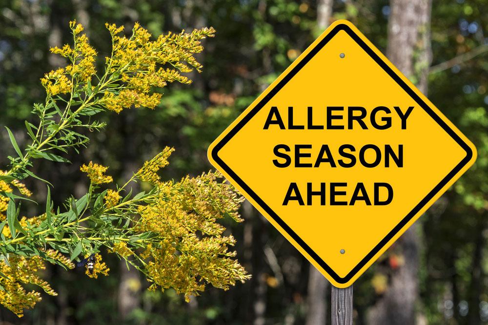 caution sign that says allergy season ahead